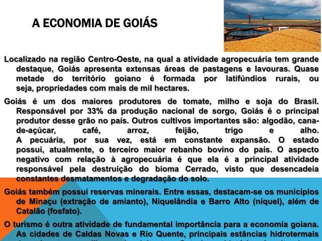 A ECONOMIA DE GOIÁSLocalizado na região Centro-Oeste, na qual a atividade agropecuária tem grande  destaque, Goiás apresen...