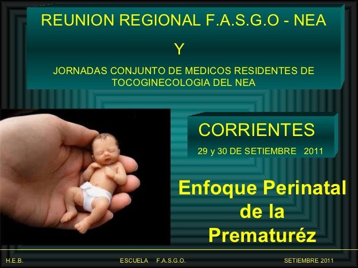 Enfoque Perinatal  de la  Prematuréz   CORRIENTES  29 y 30 DE SETIEMBRE  2011 REUNION REGIONAL F.A.S.G.O - NEA Y  JORNADAS...