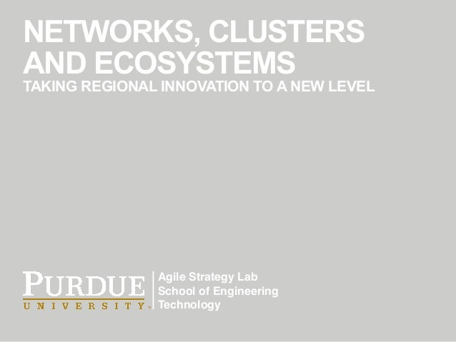 Agile Strategy Lab School of Engineering Technology NETWORKS, CLUSTERS AND ECOSYSTEMS TAKING REGIONAL INNOVATION TO A NEW ...
