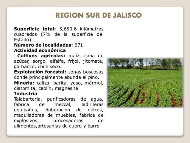 Regiones economicas de jalisco for Fabrica de marmol en chile