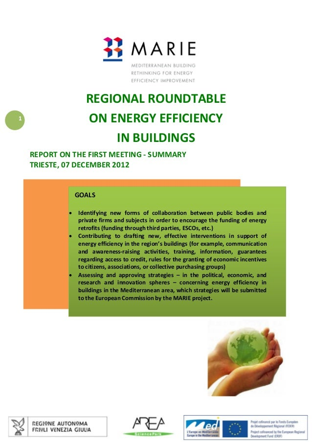 REGIONAL ROUNDTABLE  ON ENERGY EFFICIENCY  IN BUILDINGS   1  REPORT ON THE FIRST MEETING ‐ SUMMARY  TRIESTE, 07 ...