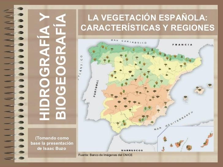 HIDROGRAFÍA Y BIOGEOGRAFÍA (Tomando como base la presentación de Isaac Buzo  LA VEGETACIÓN ESPAÑOLA: CARACTERÍSTICAS Y REG...