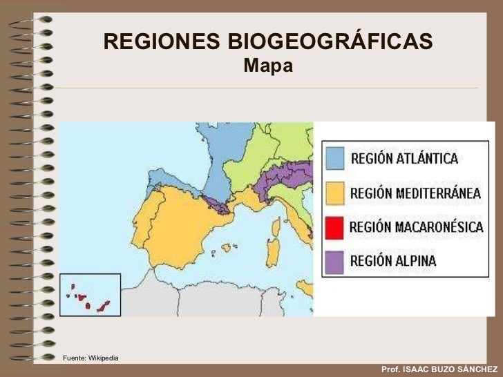 REGIONES BIOGEOGRÁFICAS Mapa Prof. ISAAC BUZO SÁNCHEZ Fuente: Wikipedia