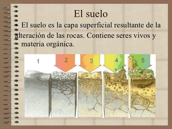 El suelo <ul><li>El suelo es la capa superficial resultante de la  </li></ul><ul><li>alteración de las rocas. Contiene ser...