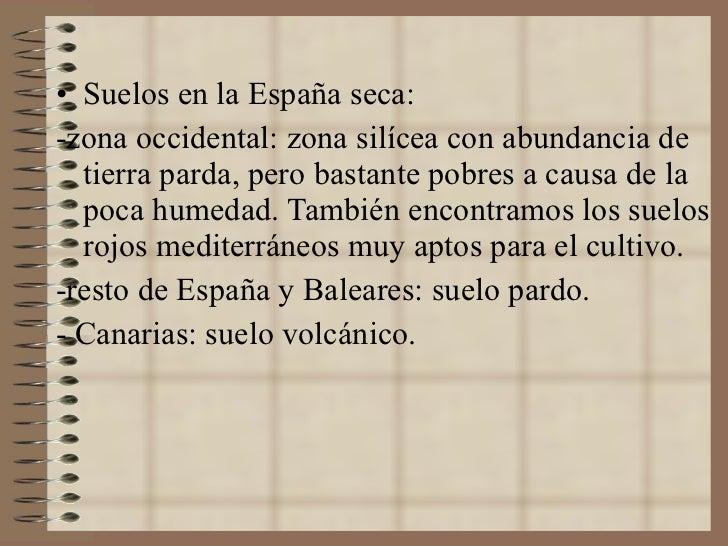<ul><li>Suelos en la España seca: </li></ul><ul><li>-zona occidental: zona silícea con abundancia de tierra parda, pero ba...