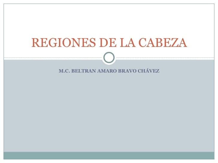 M.C. BELTRAN AMARO BRAVO CHÁVEZ REGIONES DE LA CABEZA
