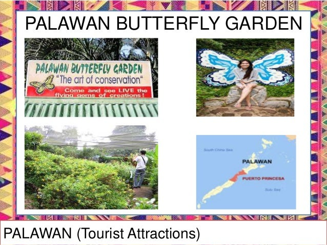 PALAWAN WILDLIFE RESCUE AND CONSERVATION CENTER PALAWAN (Tourist Attractions)