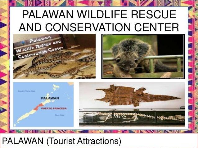 VIETVILLE RESTAURANT (Sta. Lourdes, Puerto Princesa City) PALAWAN (Tourist Attractions)