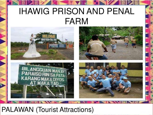 PALAWAN's FESTIVALS
