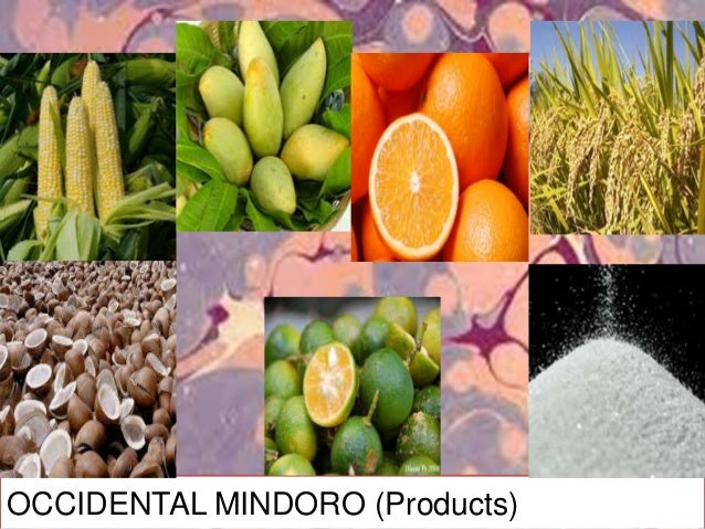 OCCIDENTAL MINDORO's HISTORICAL PLACES SCENIC SPOTS and TOURIST ATTRACTIONS