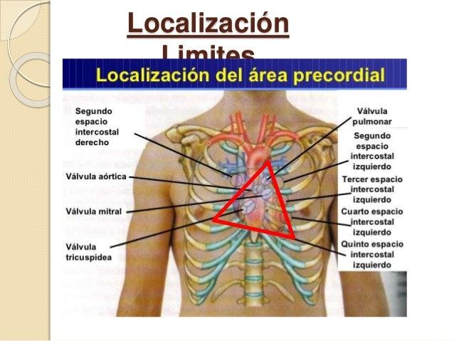 Localización Limites