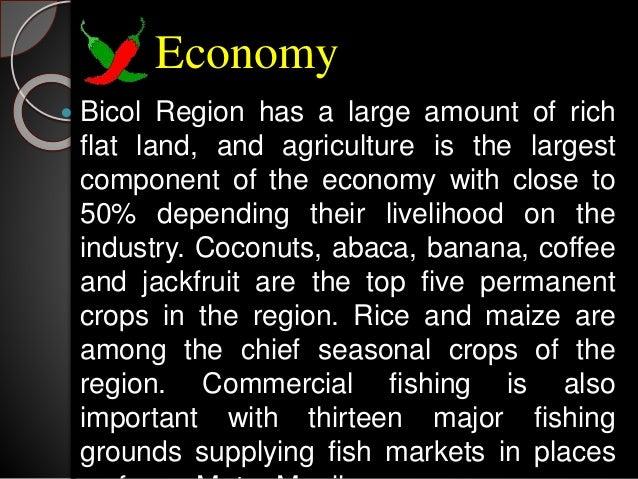 Region V Bicol region
