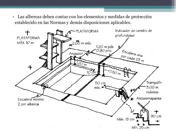 Medidas para una piscina ideas de disenos for Planos de albercas