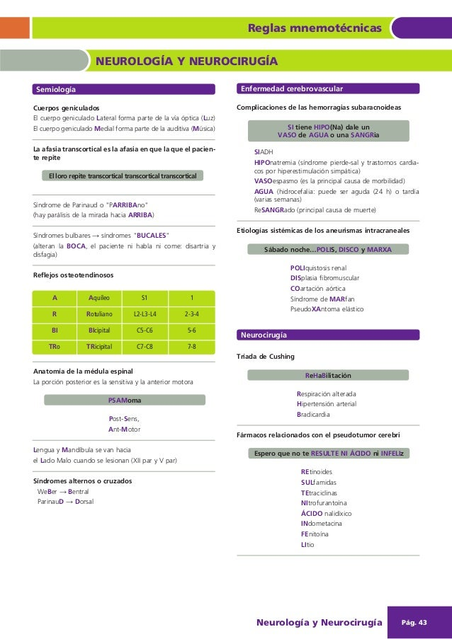 Reglas mnemotecnicas-amir