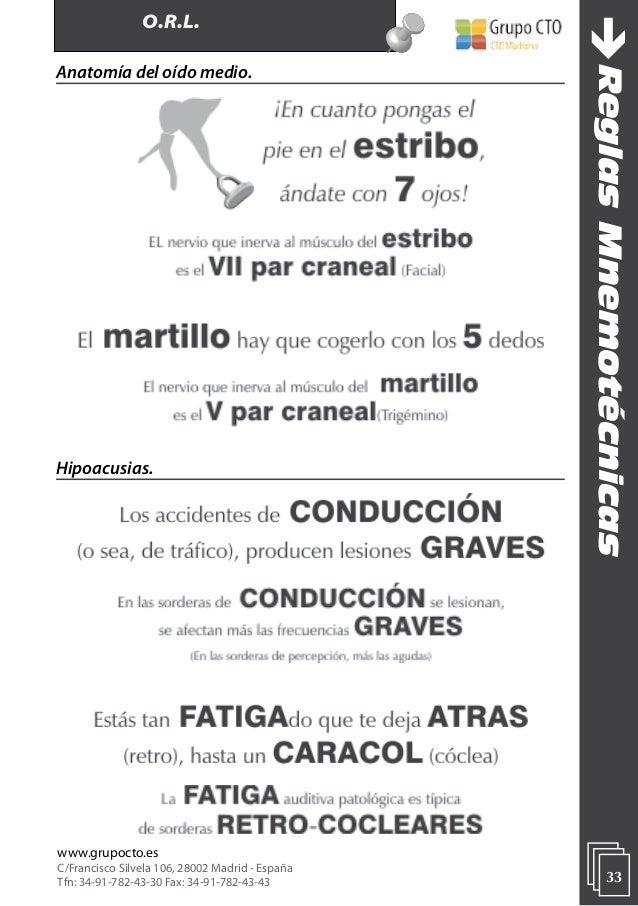 Excelente Mnemotécnico Para La Anatomía Elaboración - Anatomía de ...