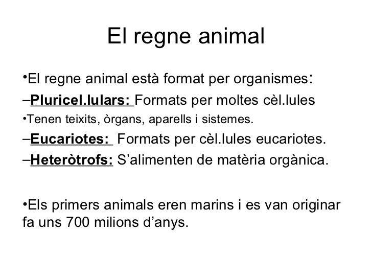El regne animal•El regne animal està format per organismes:–Pluricel.lulars: Formats per moltes cèl.lules•Tenen teixits, ò...