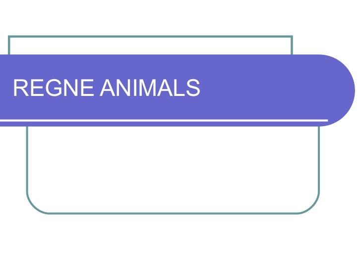 REGNE ANIMALS