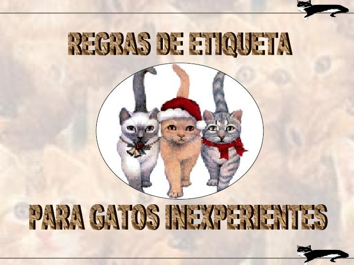 REGRAS DE ETIQUETA PARA GATOS INEXPERIENTES