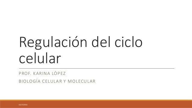 Regulación del ciclo celular PROF. KARINA LÓPEZ BIOLOGÍA CELULAR Y MOLECULAR 10/27/2016