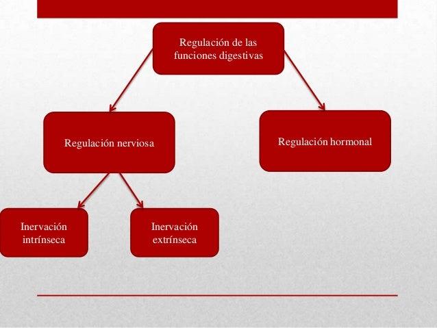 Regulación de lasfunciones digestivasInervaciónintrínsecaRegulación nerviosa Regulación hormonalInervaciónextrínseca