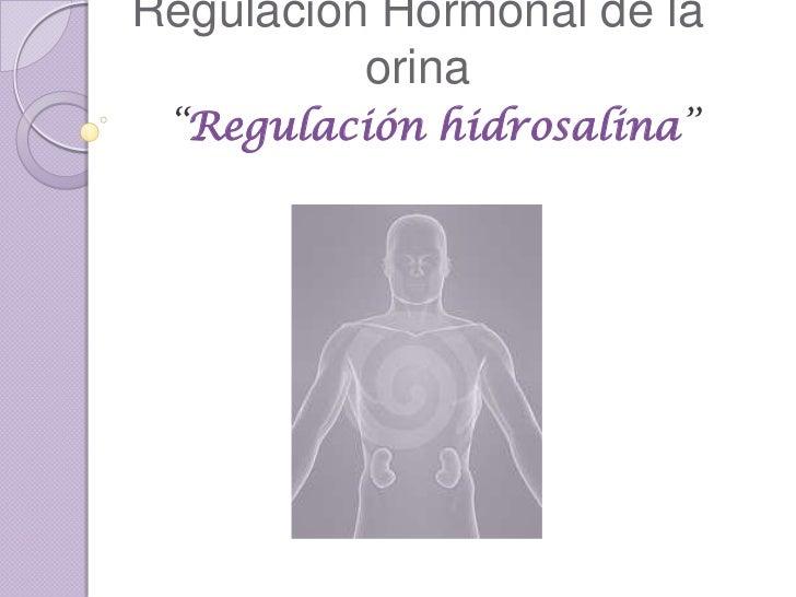 """Regulación Hormonal de la          orina """"Regulación hidrosalina"""""""
