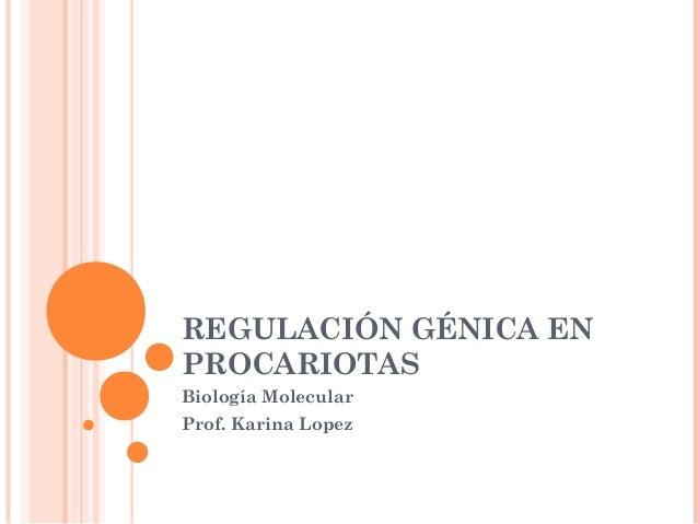 REGULACIÓN GÉNICA EN PROCARIOTAS Biología Molecular Prof. Karina Lopez