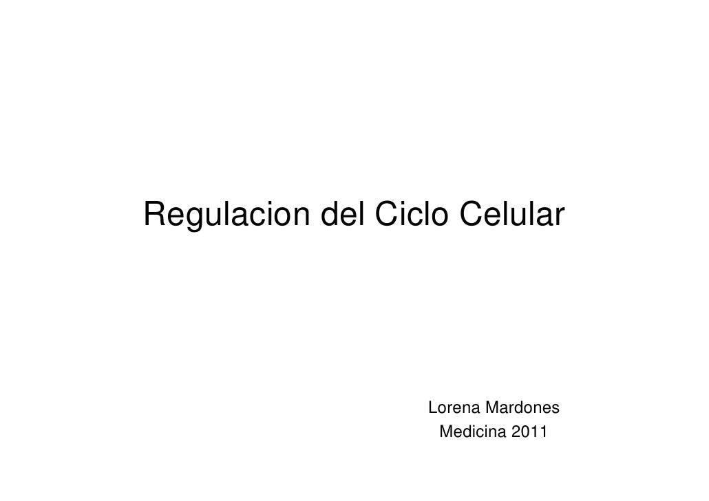 Regulacion del Ciclo Celular                  Lorena Mardones                   Medicina 2011