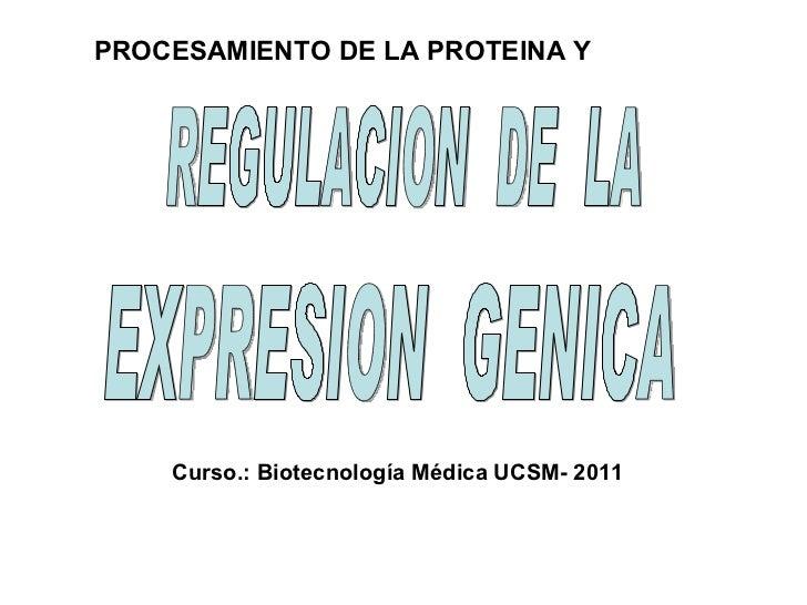REGULACION  DE  LA EXPRESION  GENICA Curso.: Biotecnología Médica UCSM- 2011 PROCESAMIENTO DE LA PROTEINA Y