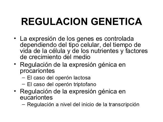 REGULACION GENETICA• La expresión de los genes es controlada  dependiendo del tipo celular, del tiempo de  vida de la célu...