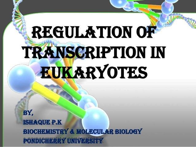 Regulation of Transcription in Eukaryotes By, Ishaque P.K Biochemistry & molecular biology Pondicherry university