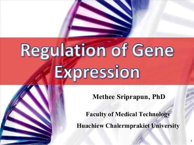 Methee Sriprapun, PhD  Faculty of Medical Technology Huachiew Chalermprakiet University  1