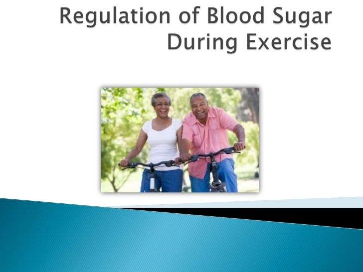Regulation of Blood Sugar During Exercise<br />