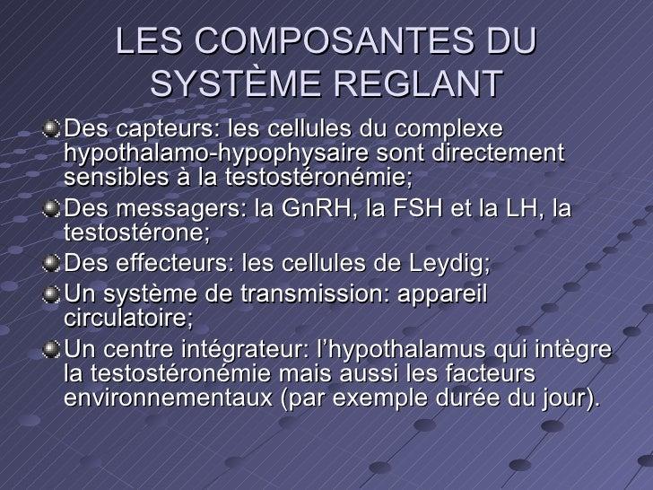 LES COMPOSANTES DU SYSTÈME REGLANT <ul><li>Des capteurs: les cellules du complexe hypothalamo-hypophysaire sont directemen...