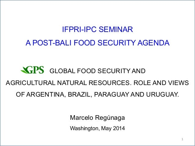 IFPRI-IPC SEMINAR A POST-BALI FOOD SECURITY AGENDA GLOBAL FOOD SECURITY AND AGRICULTURAL NATURAL RESOURCES. ROLE AND VIEWS...