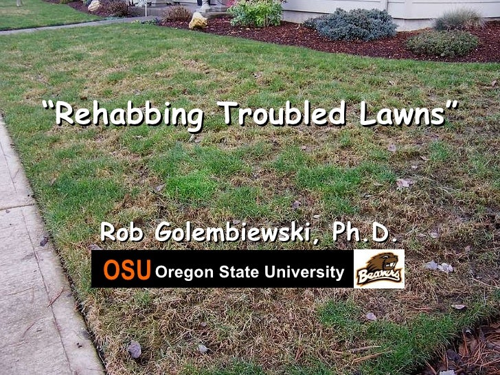 """ Rehabbing Troubled Lawns"" Rob Golembiewski, Ph.D. OSU   Oregon State University"