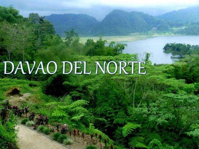 Ang lalawigan ay napapaligiran sa gawing kanluran ng Compostela  Valley at ng Davao Gulf at ng probinsya ng Agusan del Sur...