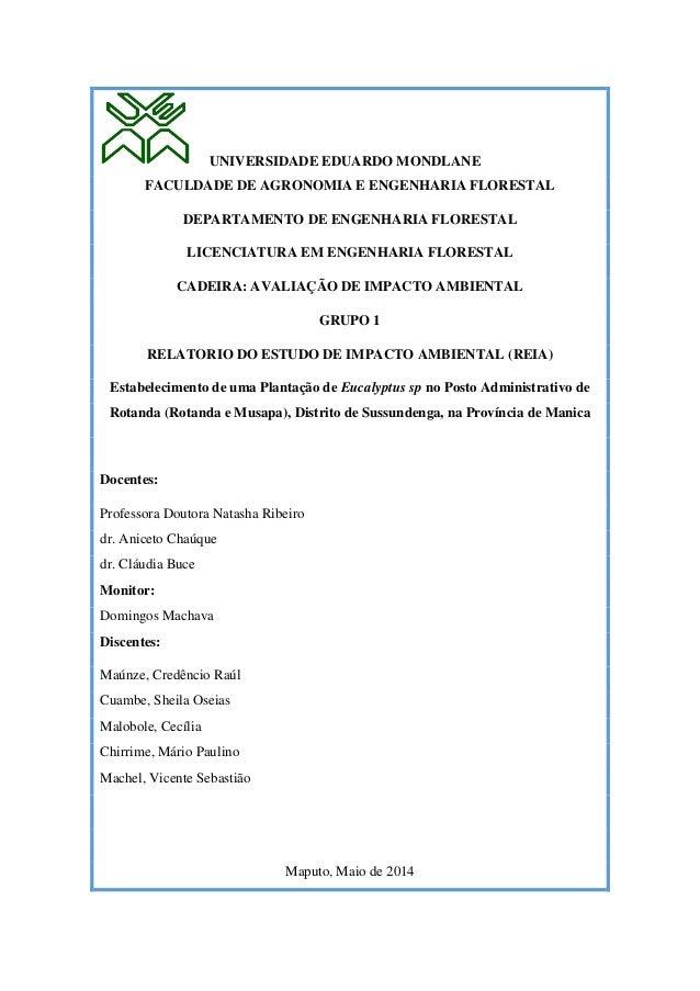 UNIVERSIDADE EDUARDO MONDLANE FACULDADE DE AGRONOMIA E ENGENHARIA FLORESTAL DEPARTAMENTO DE ENGENHARIA FLORESTAL LICENCIAT...