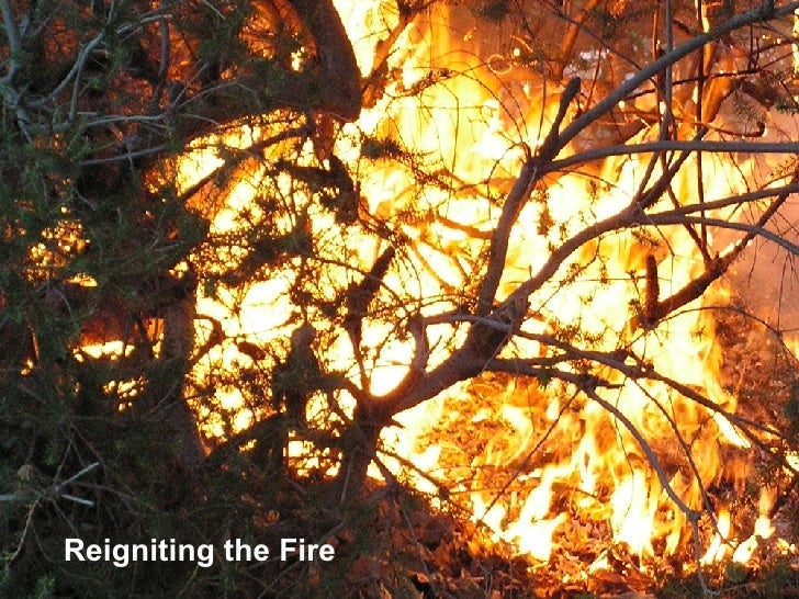 Reigniting the Fire