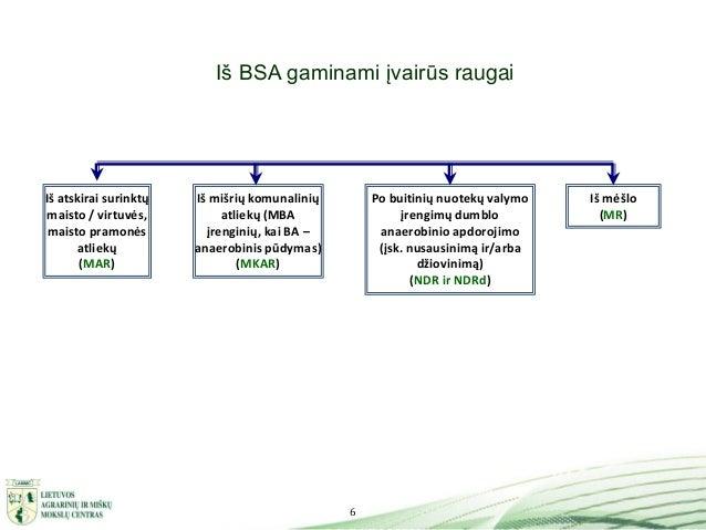 6 Iš BSA gaminami įvairūs raugai Po buitinių nuotekų valymo įrengimų dumblo anaerobinio apdorojimo (įsk. nusausinimą ir/ar...