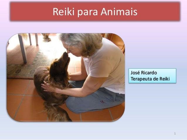 Reiki para Animais  José Ricardo  Terapeuta de Reiki  1