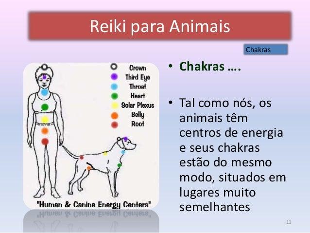 Fabuloso Reiki para animais 2014 FA31
