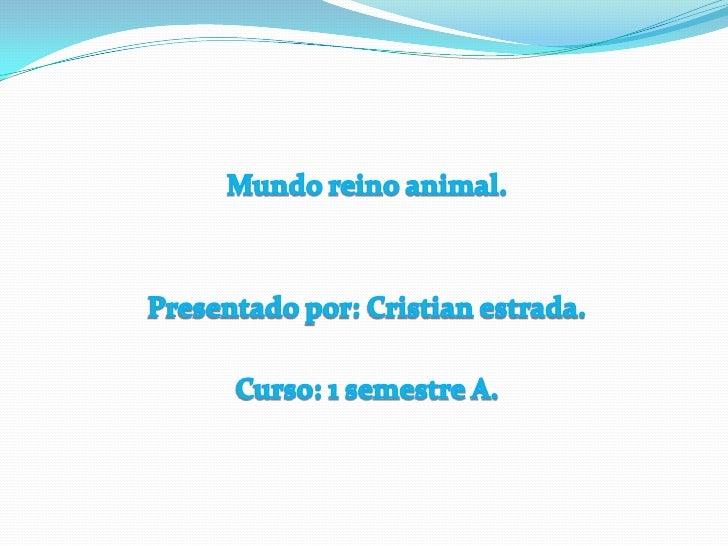 Mundo reino animal.<br />Presentado por: Cristian estrada.<br />Curso: 1 semestre A.<br />