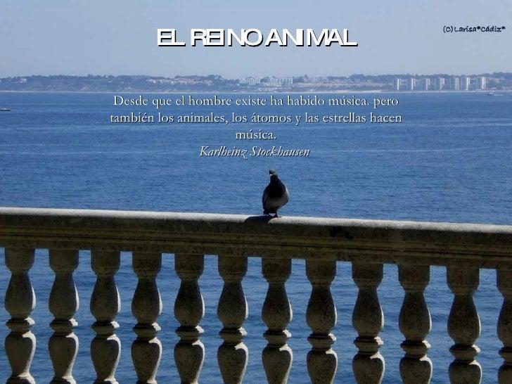 Álbum de fotografías por larisa Desde que el hombre existe ha habido música. pero también los animales, los átomos y las e...
