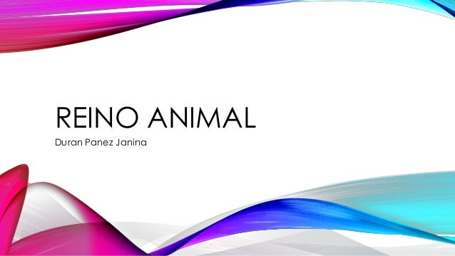 REINO ANIMAL  Duran Panez Janina