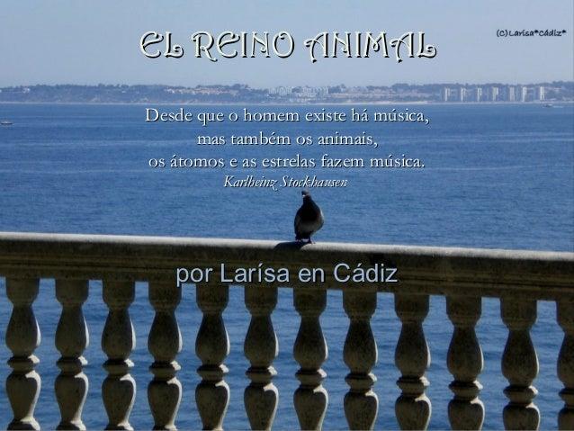 por Larísa en Cádizpor Larísa en Cádiz Desde que o homem existe há música,Desde que o homem existe há música, mas também o...