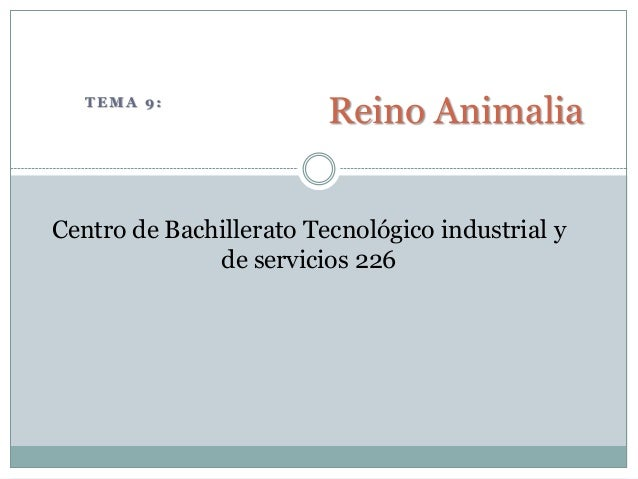 TEMA 9:                         Reino AnimaliaCentro de Bachillerato Tecnológico industrial y              de servicios 226
