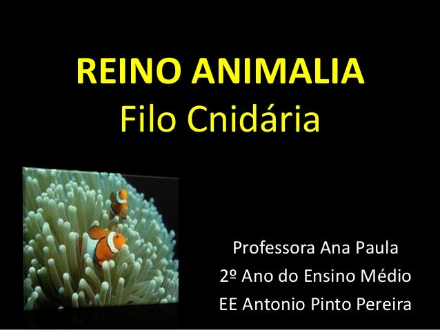 REINO ANIMALIA Filo Cnidária Professora Ana Paula 2º Ano do Ensino Médio EE Antonio Pinto Pereira
