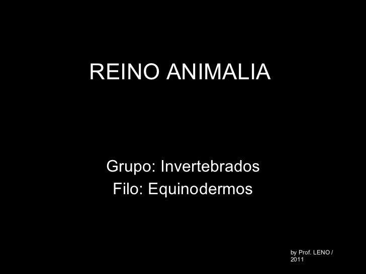 REINO ANIMALIA Grupo: Invertebrados Filo: Equinodermos by Prof. LENO / 2011