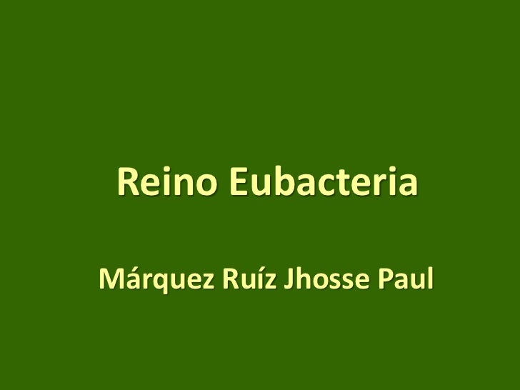 Reino Eubacteria  Márquez Ruíz Jhosse Paul