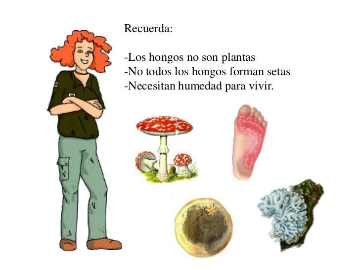 Los métodos públicos del tratamiento del hongo de las uñas y la piel